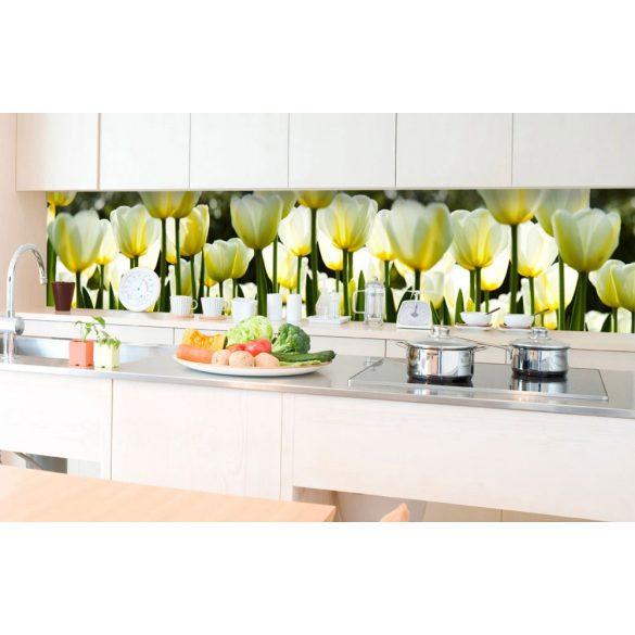 Fehér tulipánok, konyhai matrica hátfal, 350 cm