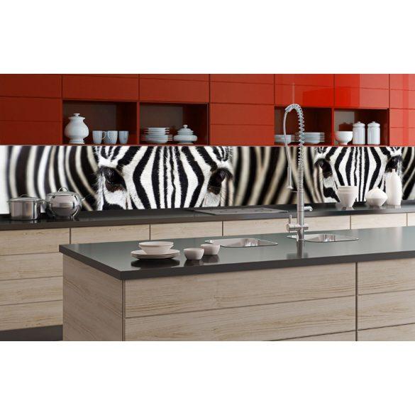 Zebrák, konyhai matrica hátfal, 350 cm
