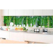Nyírfaerdő, konyhai matrica hátfal, 350 cm