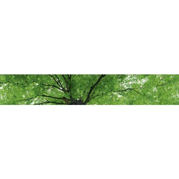 Lombkorona, konyhai matrica hátfal, 350 cm