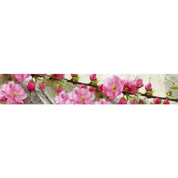 Virágzó cseresznyefaág, konyhai matrica hátfal, 350 cm