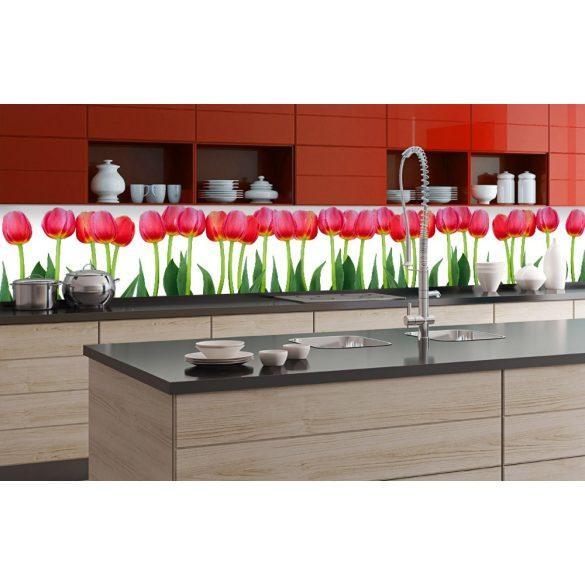 Tulipánok, konyhai matrica hátfal, 350 cm