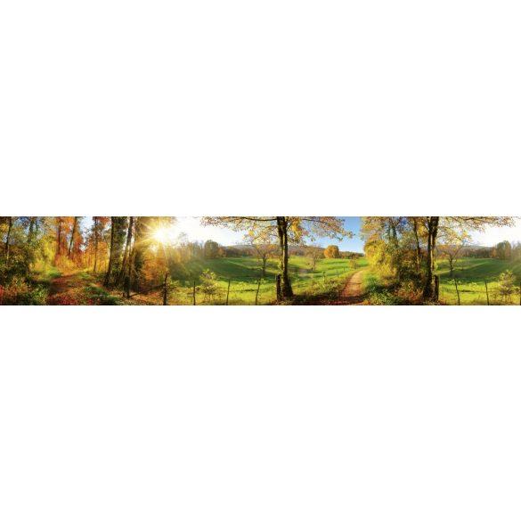 Napfényes erdei út, konyhai matrica hátfal, 350 cm
