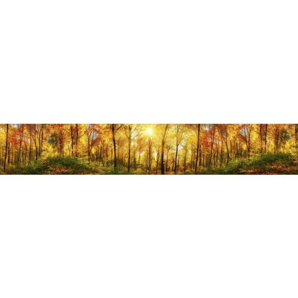 Fényes őszi erdő, konyhai matrica hátfal, 350 cm