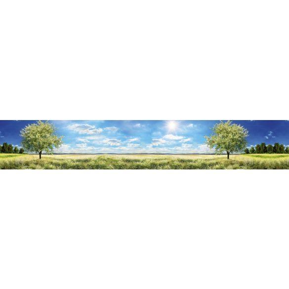 Napfényes tavaszi rét, konyhai matrica hátfal, 350 cm