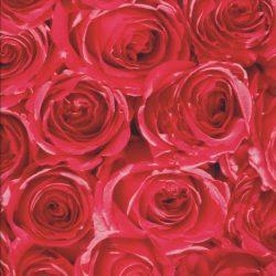 Piros rózsa mintás öntapadós tapéta a Dekormatricák Webáruházban