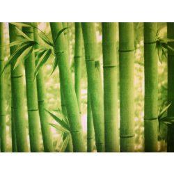 Bambuszfal mintás öntapadós tapéta